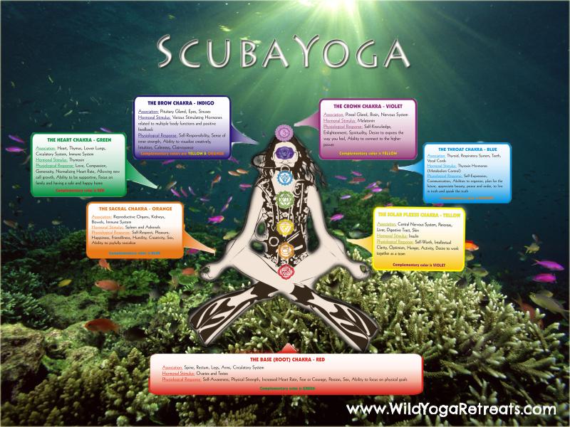 scubayoga retreats