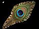 peacock3.png