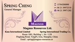 Magnus Card