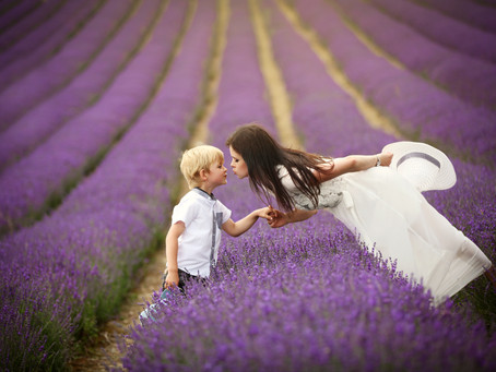 Lavender Mini Sessions with Catching Dreams Photography