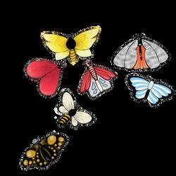 Özgürlük Kelebekleri