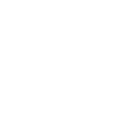 CPD icon.png