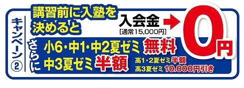 joysta_campaign02.jpg