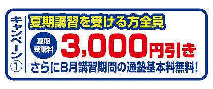 joysta_campaign01.jpg