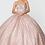 Thumbnail: Elizabeth K - V28010 Jewel Embelished Glitter Mesh w/Glitter Mesh Cloak