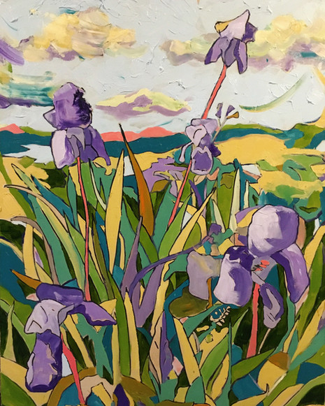 The Irises in Full Bloom