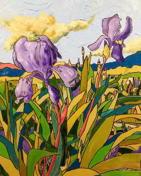 The Irises, Dancing