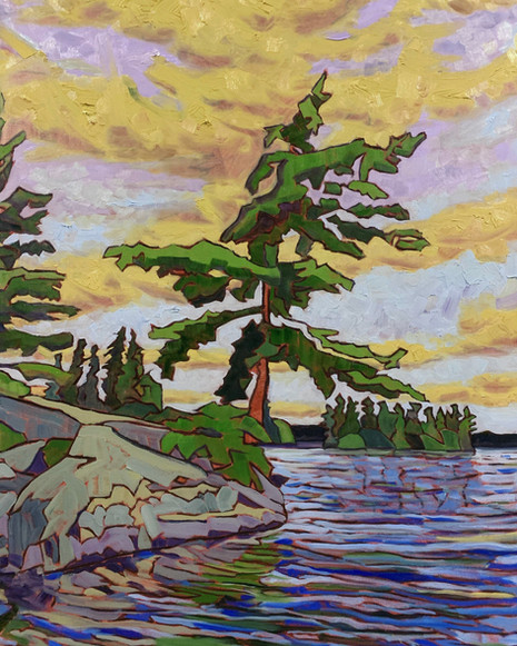 White Pine, Blueberry Island. Round Lake, Algonquin Park