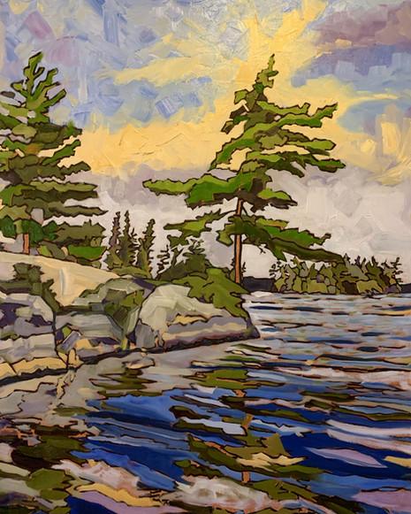White Pine, Island's Edge. Round Lake, Algonquin Park