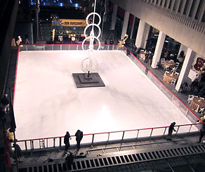 ICEOPS Portable Ice Rink 3