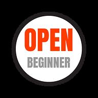Open Beginner Division