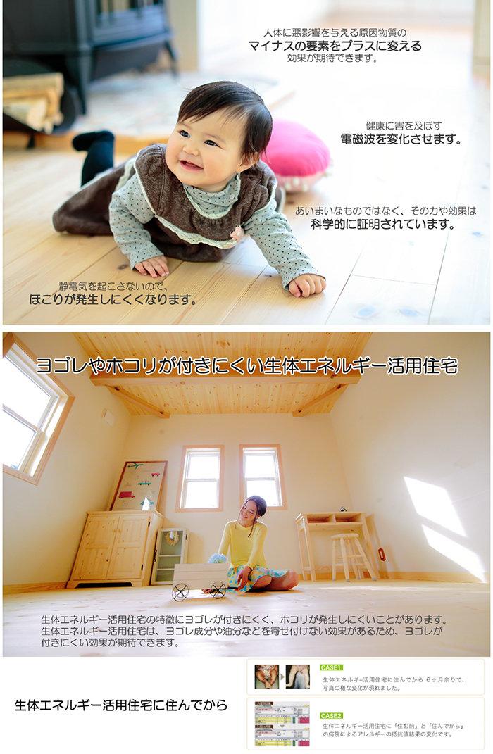 生体エネルギーの家.jpg