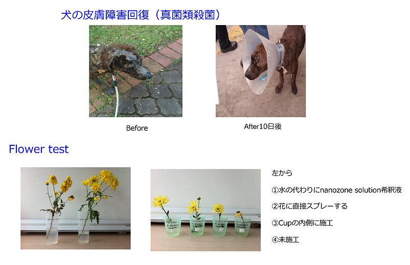 施工効果実例ー3.jpg