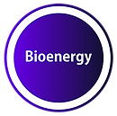 Bioenergy05out.png