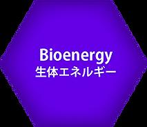 生体エネルギー.png