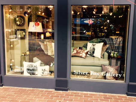 What's in Our Window?