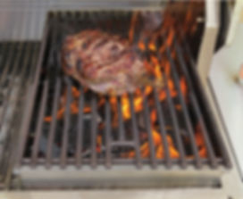 Solid Fuel Insert with Meat.jpg