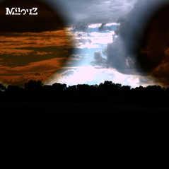 MilouZ-2011-2.jpg