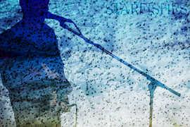 Starfishes - -IMG_8186-4.jpg