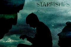 Starfishes - -DSC_1335.jpg
