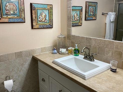bathroom sink Feb 2020.jpg