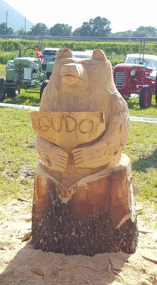 Scultura con la motosega - Orso Gudo