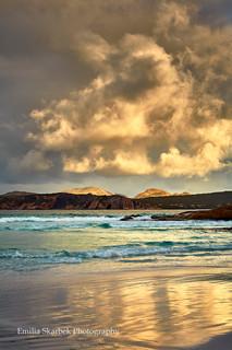 Gold Reflection (Western Australia)