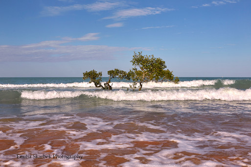 On the Red Beach (Western Australia)