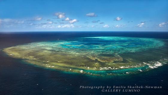 Bait Reef 1, Queensland