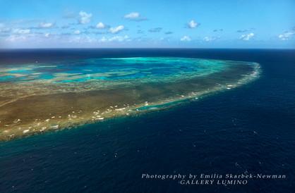 Bait Reef 2, Queensland