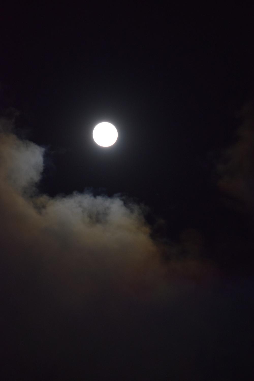 conte pleine lune fourmi