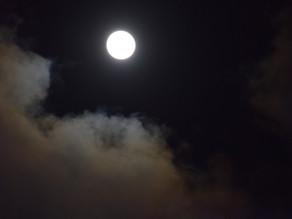 31.1.21 Cercle pour célébrer Imbolc et pleine lune de janvier dans la Yourte