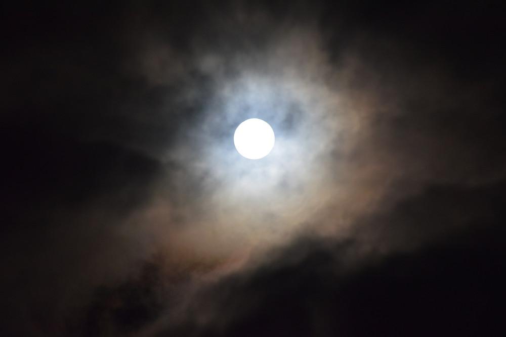 Lune message animaux souris renard