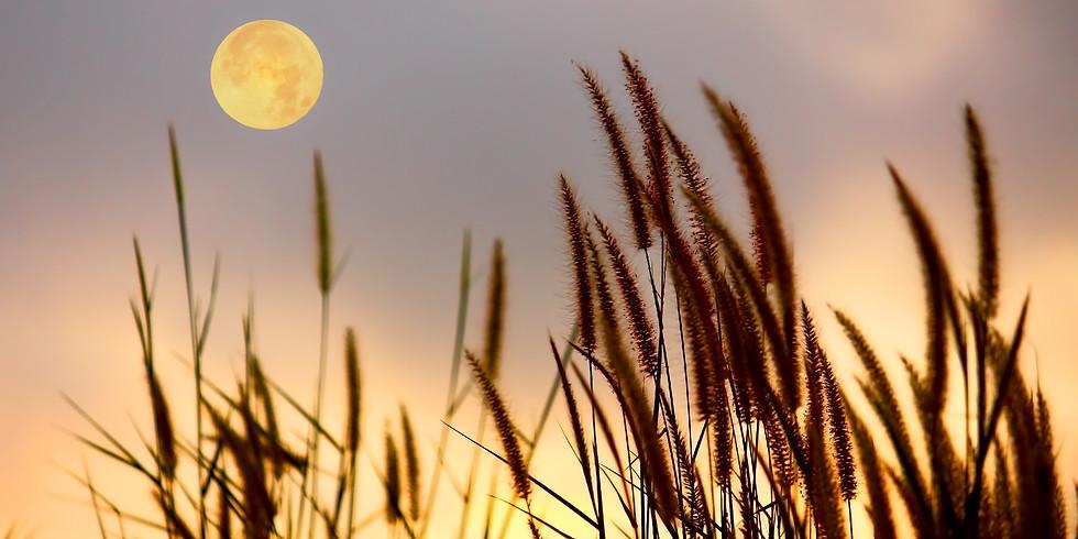 22.8.21  Cercle de la pleine lune