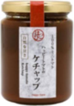 R_ketchup-700p-tri.jpg