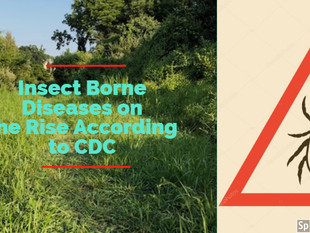 Are You Familiar with Vector Borne Diseases?