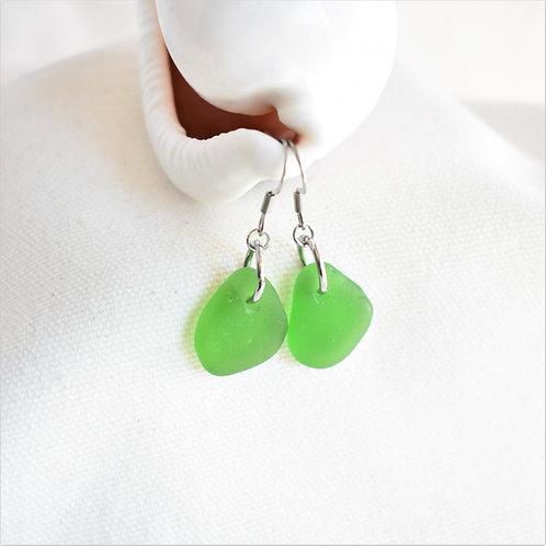 Kelly Green Beach Glass Earrings, Hypoallergenic Wires