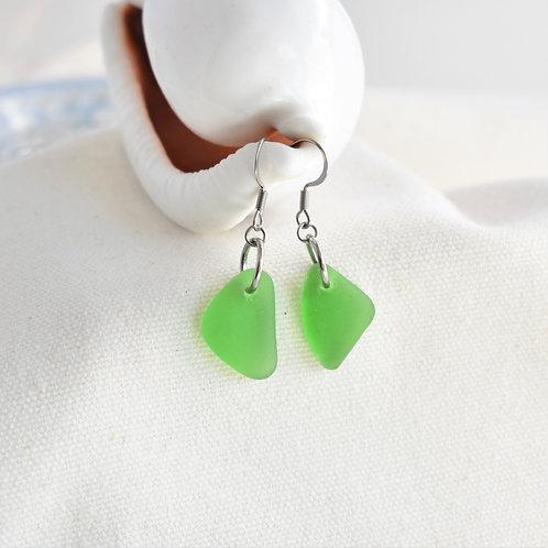 Kelly Green Beach Glass Earrings on Hypoallergenic Wires