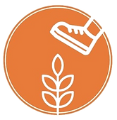 Campi coltivati2_edited.png