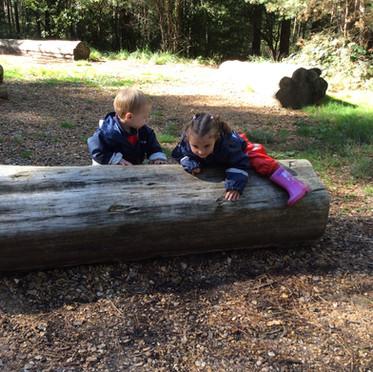 Climbing over logs