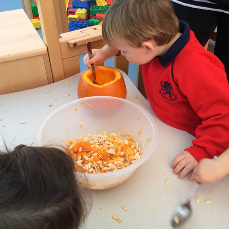Digging out the pumpkin seeds