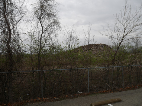 The site of Pruitt-Igoe as it stands today Photo by Echoes Photography