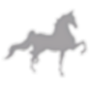 saddlebred_edited_edited.png
