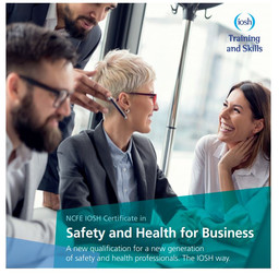 IOSH Safety and Health for Business.JPG