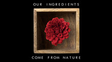OUR INGREDIENTS COME FROM NATURE