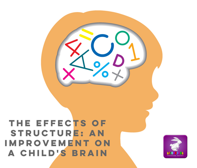 THE EFFECTS OF STRUCTURE: AN IMPROVEMENT ON A CHILD'S BRAIN