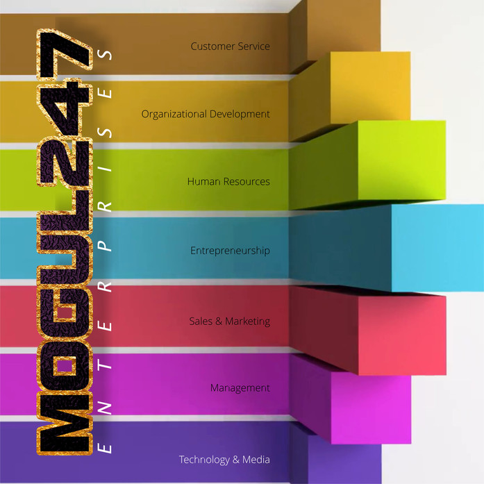 WHAT IS MOGUL247 ENTERPRISES?
