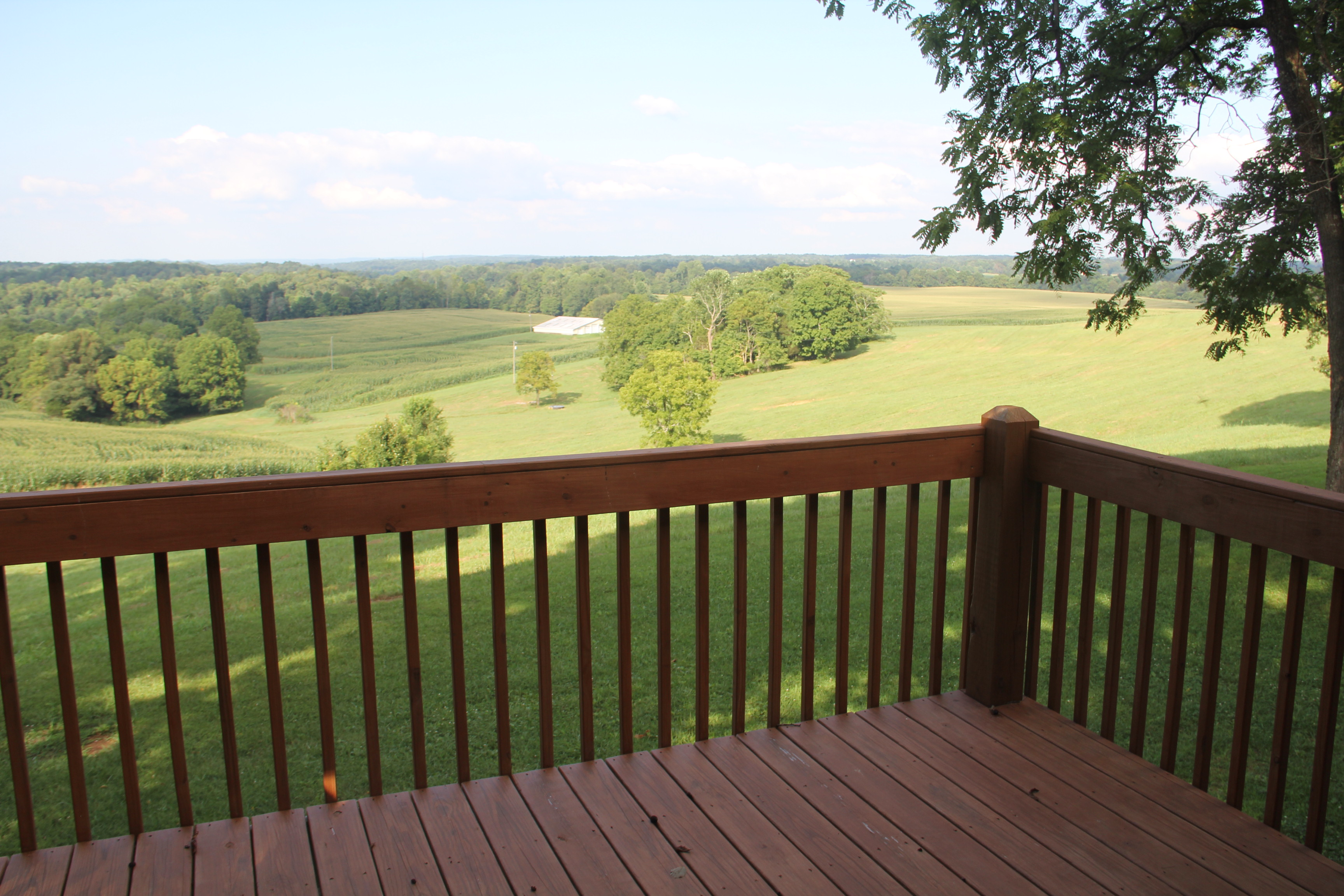 View from Farmhouse Deck