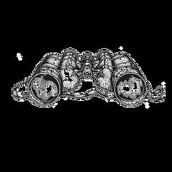 logo binoculus nero.png