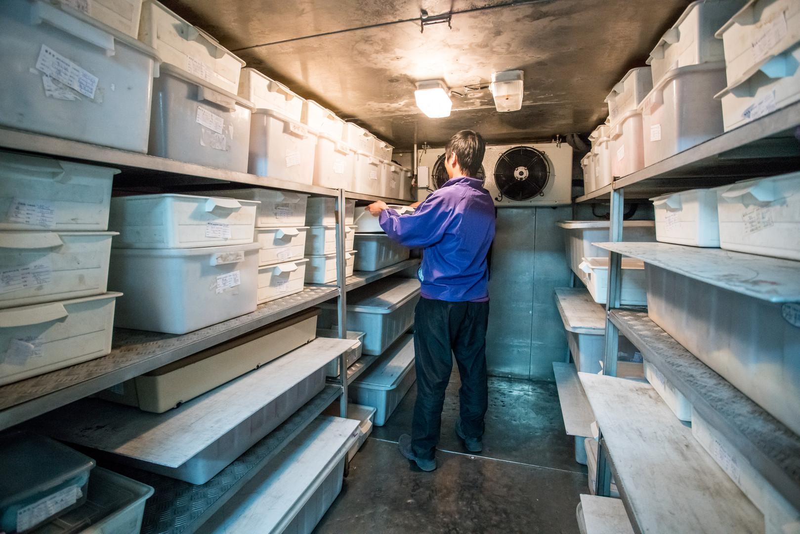 專業大型冷藏庫